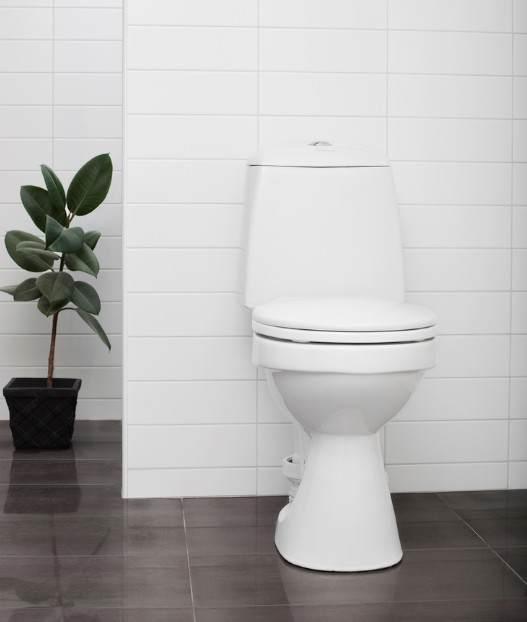 Toilettes Wostman Ecoflush par EAU2CA