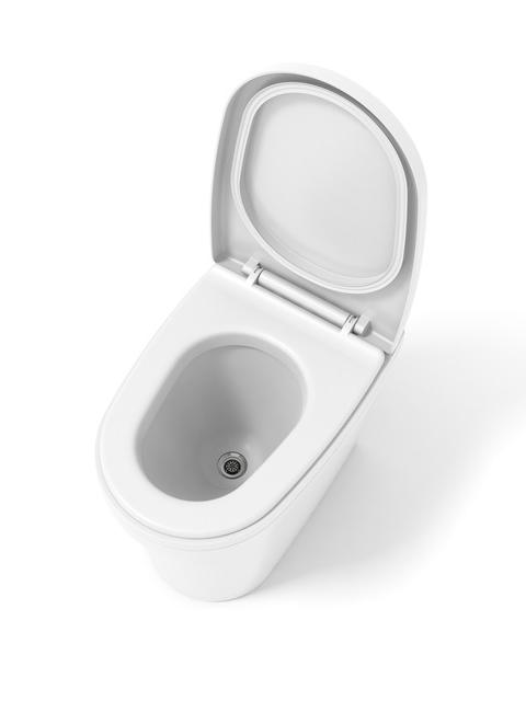 Cinderella urinal 1