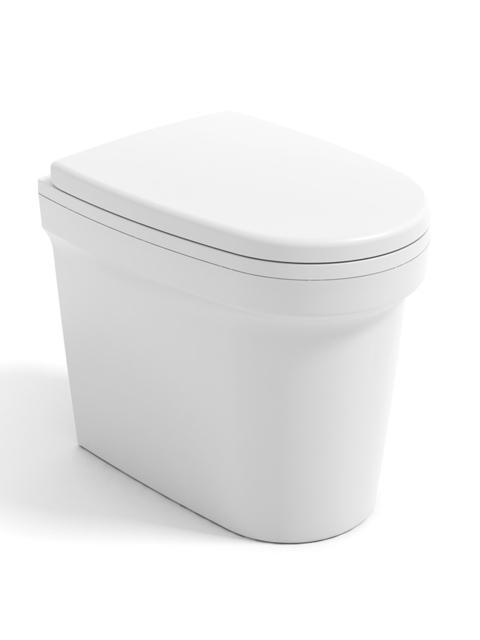 Cinderella urinal toilette urinoir sans eau